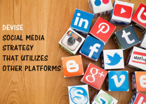 DEVISE-A-SOCIAL-MEDIA-STRATEGY-THAT-UTILIZES-OTHER-PLATFORMS.