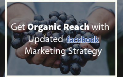 Get Organic Reach with Updated Facebook Marketing Strategy